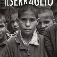 Presentazione del romanzo IL SERRAGLIO di Gennaro Rollo