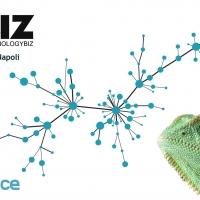 Technologybiz 2017- VoipVoice al servizio delle aziende
