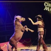 """Vivere """"il sogno"""", al Circo di Mosca, diventa realtà"""