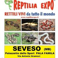 REPTILIA EXPO - L'affascinante mondo dei rettili al Palasport di SEVESO