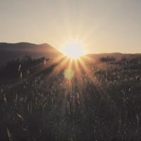VOLVEDO presentano il secondo video tratto dal nuovo album LA FINE DELL'ERA DEL PETROLIO