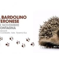 VENTESIMA EDIZIONE DI SAN ZENO CASTAGNE, BARDOLINO & MONTE VERONESE: UN MESE DEDICATO AI PRODOTTI DEL BALDO