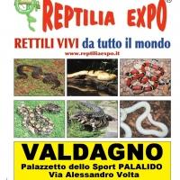 REPTILIA EXPO - L'affascinante mondo dei rettili ...arriva per la prima volta volta a VALDAGNO