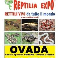 REPTILIA EXPO - L'affascinante mondo dei rettili ...al Centro Sportivo Geirino di OVADA