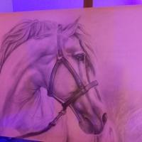 Un cavallo di Elisabetta Rogai per GiordanoVini
