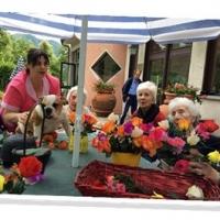 Da una residenza per anziani a Firenze quali requisiti esigere?