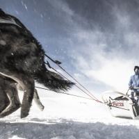 Fjällräven Polar 2018: Via alle iscrizioni per partecipare all'incredibile avventura artica