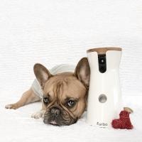 Furbo: la nuova videocamera per cani  interattiva controllabile con app