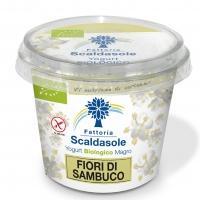 Fattoria Scaldasole amplia la sua gamma di yogurt da 250g