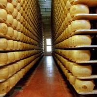 De Gustibus, la guida all'agroalimentare per l'export
