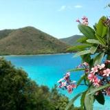 Aprile: arriva lo spumeggiante Carnevale alle Isole Vergini Americane!