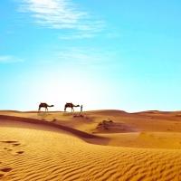 Una mostra sulle antiche civiltà del Sahara I TUAREG TRA MARI DI SABBIA E ROCCE
