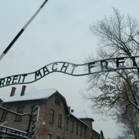 Auschwitz: Un pensiero per la Giornata della Memoria 1945-2018. (Scritto da Antonio Castaldo)