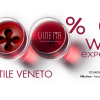 WINE EXPERIENCE A VILLA EMO: 300 MOTIVI PER NON MANCARE