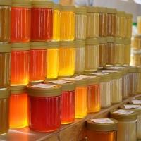 Apicoltura Anzivino: produzione e vendita miele italiano on-line. On line il nuovo sito
