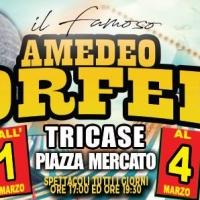 Lo show che affascina il Salento, è Il  Circo  Amedeo Orfei,  tappa a Tricase dall' 1al 4 marzo