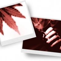 Informazione sulle droghe distribuita a Telgate