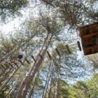 Parchi avventura: sicurezza e protezione dal rischio fulmini