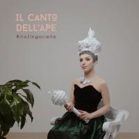 """RITA ZINGARIELLO:  """"IL CANTO DELL'APE""""  è il nuovo album della cantautrice pugliese"""