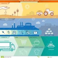 Food Supply Chain Management: il ruolo del consulente aziendale