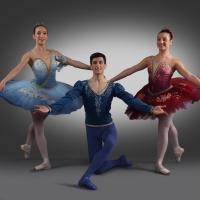 40 anni di attività per il Professional Ballet di Pina Testa