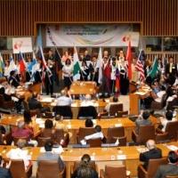 Diffusione dei Diritti Umani in una popolata via di Brescia