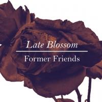 Former friends: nuovo album in uscita