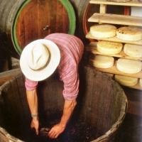 Chicche di gusto : il formaggio