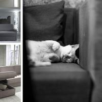 Divano letto: comodità e praticità in pochissimi movimenti