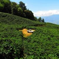 San Cayetano, dalla Colombia  un caffè intenso dal gusto bilanciato