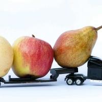 Logistica inversa: l'importanza del Food Logistics Management