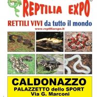 REPTILIA EXPO - L'affascinante mondo dei rettili a CALDONAZZO (Trento) dal 3 al 20 Agosto