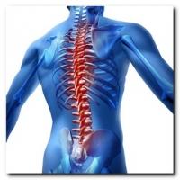 servizi polifunzionali per i trattamenti ortopedici e sportivi al Centro Salute
