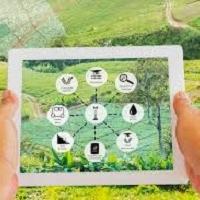 Digitalizzazione e precisione: la nuova frontiera dell'agricoltura 4.0