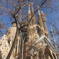 Il pavimento galleggiante arriva alla Sagrada Familia