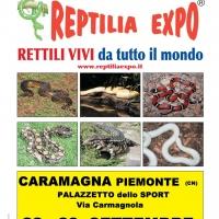REPTILIA EXPO - L'affascinante mondo dei rettili al Palasport di CARAMAGNA PIEMONTE