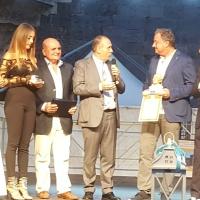"""Napoli: Svolto il Premio Internazionale """"L'Ambasciatore del Sorriso"""" promosso dall'Associazione """"Vesuvius"""" di Angelo Iannelli."""
