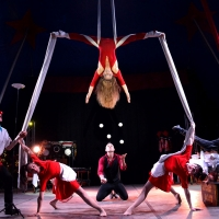 Il Crazy Dream Circus di Mister David apre il Clown & Clown Festival