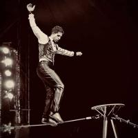 L'incantevole favola del grandioso Circo David Orfei a Trento