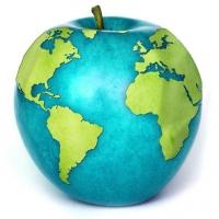 Sviluppo sostenibile: la salute e la sicurezza nella strategia d'impresa