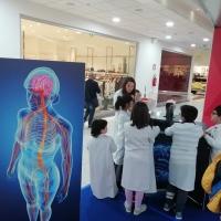 """""""Alla scoperta del corpo umano"""": in Basilicata la grande mostra interattiva"""