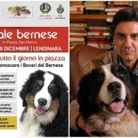 Natale Bernese a Lendinaria