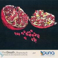 GUNA respira con theBreath®. Il primo caso di applicazione del rivoluzionario materiale tessile in grado di assorbire le particelle inquinanti dell'aria indoor e outdoor negli ambienti di un'azienda
