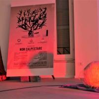 Presentazione del corto Non Calpestare: l amministrazione comunale di Cori ricorda la Dichiarazione Universale dei Diritti Umani e stigmatizza il decreto sicurezza