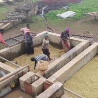 In Etiopia con CSC, il  fascino della terra d'origine del caffè