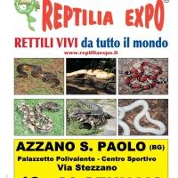 L'affascinante mondo dei rettili in Mostra al Palazzetto dello Sport di Azzano San Paolo (Bergamo)