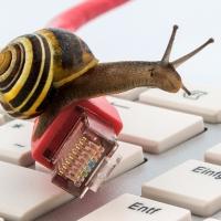 ADSL e fibra ottica: 1 cliente su 3 vorrebbe cambiare operatore