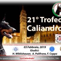 #amatoridobermann Aiad organizza un evento straordinario il 21' trofeo Caliandro