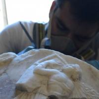 IL RITORNO DI DIONISO: Progetto di riscoperta, restauro e valorizzazione di un cratere di marmo