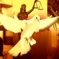 Diritti Umani:  i volontari di Scientology fanno informazione a Corinaldo